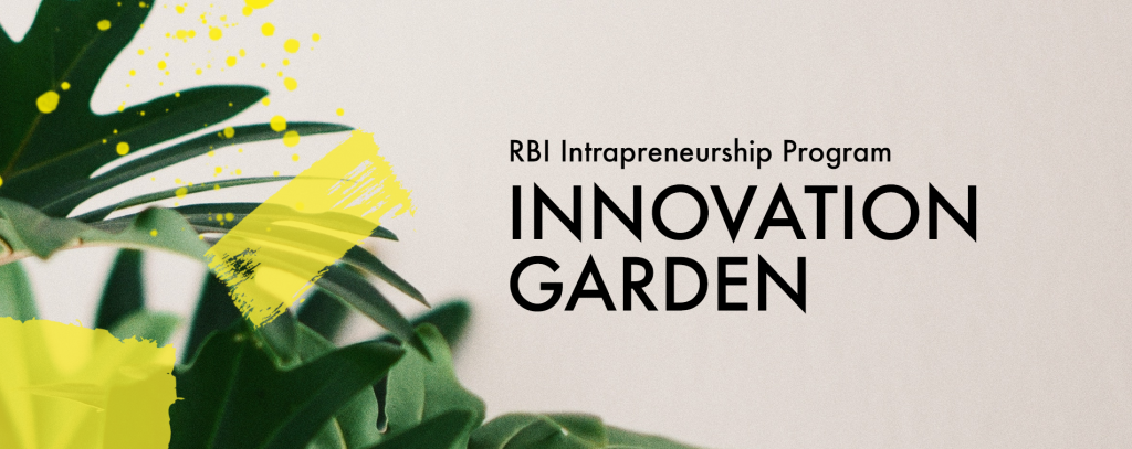 RBI Intrapreneurship Program mit HYVE